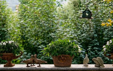 Progettazione Terrazzi archiverde giardini