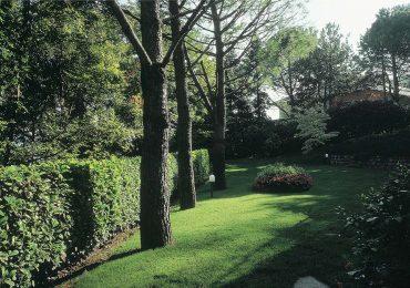 Realizzazione Giardini Archiverde