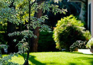 Realizzazione Giardini Archiverde srl