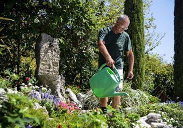 manutenzione vivaio archiverde giardini