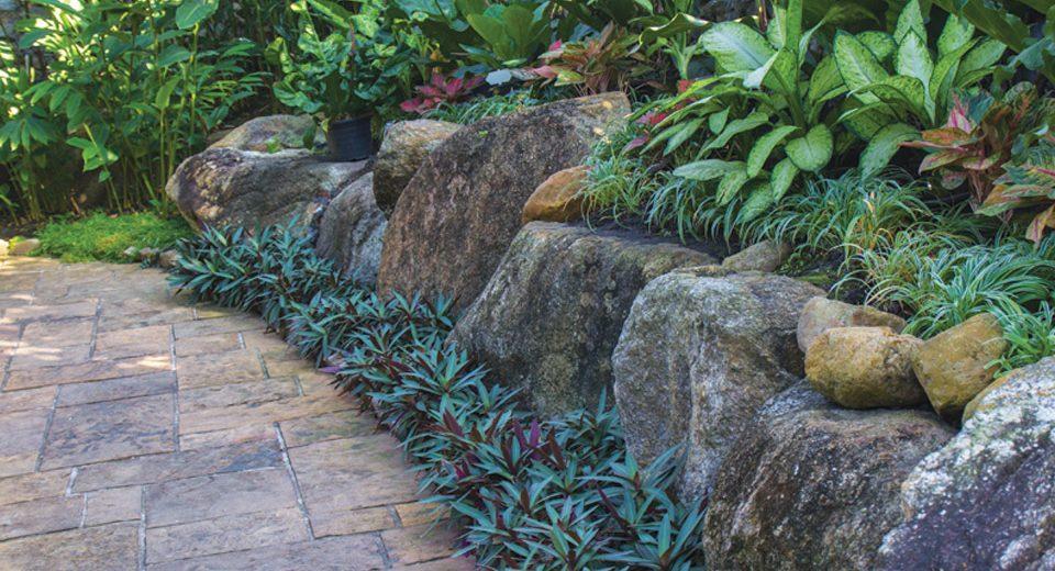 giardino-roccioso-archiverde-giardini