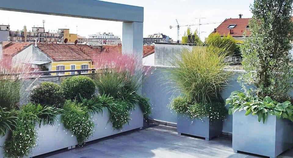 Trasforma il tuo terrazzo in una splendida oasi verde for Giardino in terrazza