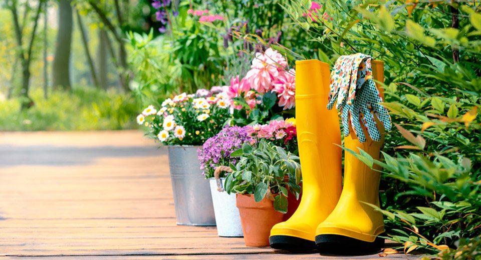 lavori-giardino-estate